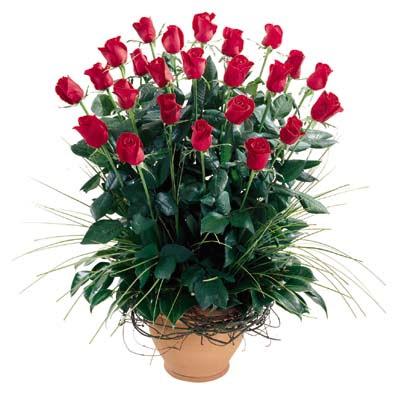 Çanakkale çiçek yolla , çiçek gönder , çiçekçi   10 adet kirmizi gül cam yada mika vazo