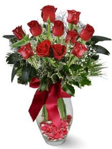 9 adet gül  Çanakkale çiçek online çiçek siparişi  kirmizi gül