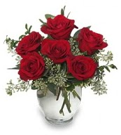 Vazo içerisinde 5 adet kırmızı gül  Çanakkale anneler günü çiçek yolla