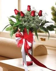 Camda 5 kırmızı gül tanzimi  Çanakkale online çiçek gönderme sipariş