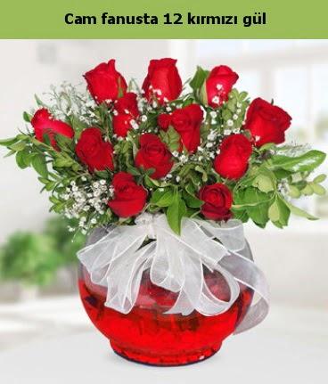 Cam içerisinde 12 adet kırmızı gül  Çanakkale çiçek online çiçek siparişi