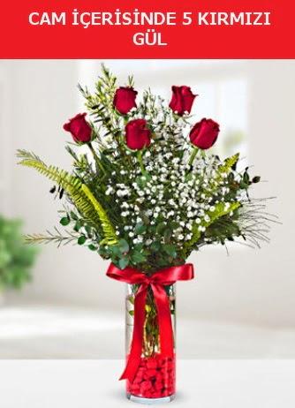 Cam içerisinde 5 adet kırmızı gül  Çanakkale hediye sevgilime hediye çiçek