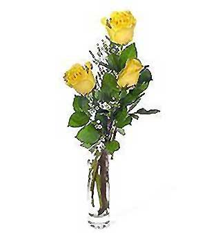 Çanakkale çiçek mağazası , çiçekçi adresleri  3 adet kalite cam yada mika vazo gül
