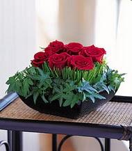Çanakkale hediye sevgilime hediye çiçek  10 adet kare mika yada cam vazoda gül tanzim