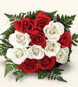 Çanakkale cicekciler , cicek siparisi  10 adet kirmizi beyaz güller - anneler günü için ideal seçimdir -