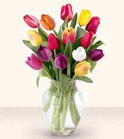 Çanakkale çiçek servisi , çiçekçi adresleri  13 adet cam yada mika vazoda laleler