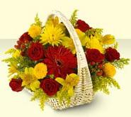 Çanakkale İnternetten çiçek siparişi  sepette mevsim çiçekleri