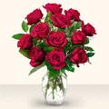 Çanakkale internetten çiçek siparişi  10 adet gül cam yada mika vazo da