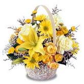 sadece sari çiçek sepeti   Çanakkale çiçekçiler