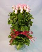 13 adet pembe gül silindirde   Çanakkale internetten çiçek siparişi