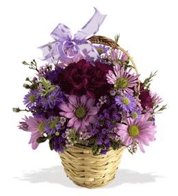 Çanakkale çiçek yolla , çiçek gönder , çiçekçi   sepet içerisinde krizantem çiçekleri
