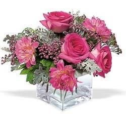 Çanakkale online çiçekçi , çiçek siparişi  cam içerisinde 5 gül 7 gerbera çiçegi