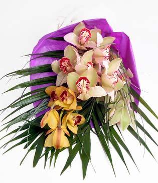 Çanakkale online çiçekçi , çiçek siparişi  1 adet dal orkide buket halinde sunulmakta