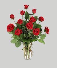 Çanakkale online çiçekçi , çiçek siparişi  11 adet kirmizi gül vazo halinde