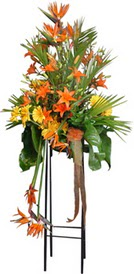 Çanakkale hediye sevgilime hediye çiçek  perförje tanzimi dügün nikah ve açilislara