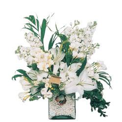 Çanakkale çiçek mağazası , çiçekçi adresleri  sadece beyazlardan olusmus mevsim cam yada mika tanzim