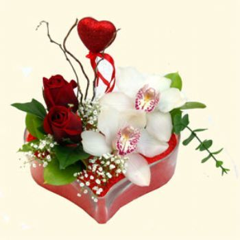 Çanakkale çiçek yolla  1 kandil orkide 5 adet kirmizi gül mika kalp
