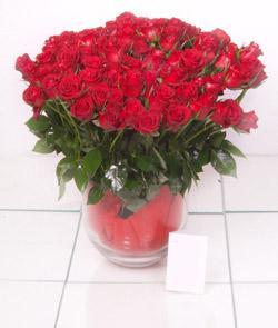 Çanakkale yurtiçi ve yurtdışı çiçek siparişi  101 adet kirmizi gül