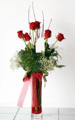Çanakkale online çiçekçi , çiçek siparişi  6 adet kirmizi gül ve cam yada mika vazo