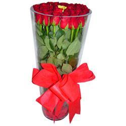 Çanakkale çiçek gönderme  12 adet kirmizi gül cam yada mika vazo tanzim