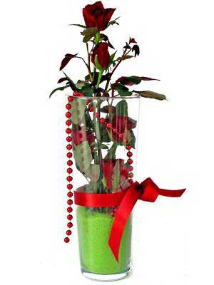 Çanakkale güvenli kaliteli hızlı çiçek  Cam yada mika içerisinde 9 adet kirmizi gül - sevdiklerinize özel