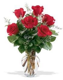 Çanakkale çiçekçiler  7 adet kirmizi gül cam yada mika vazoda sevenlere