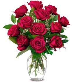 Çanakkale güvenli kaliteli hızlı çiçek  1 düzine kirmizi gül sevenlere özel vazo gülleri