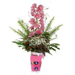 Çanakkale 14 şubat sevgililer günü çiçek  cam yada mika vazo içerisinde tek dal orkide çiçegi
