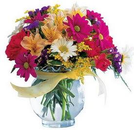 Çanakkale çiçek online çiçek siparişi  cam yada mika içerisinde karisik mevsim çiçekleri