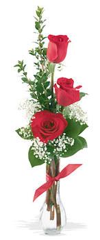 Çanakkale online çiçekçi , çiçek siparişi  mika yada cam vazoda 3 adet kirmizi gül