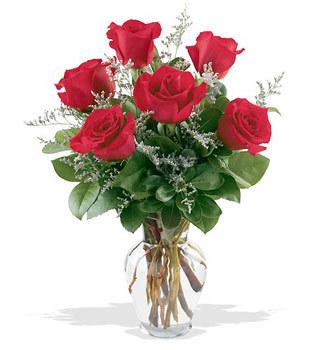 Çanakkale online çiçekçi , çiçek siparişi  cam yada mika vazoda 6 adet kirmizi gül