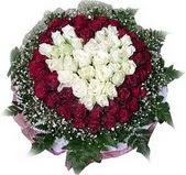 Çanakkale çiçek satışı  27 adet kirmizi ve beyaz gül sepet içinde