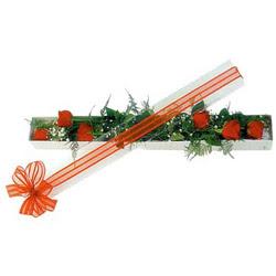 Çanakkale hediye sevgilime hediye çiçek  6 adet kirmizi gül kutu içerisinde