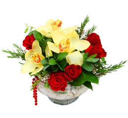 Çanakkale çiçek siparişi vermek  1 adet orkide 5 adet gül cam yada mikada