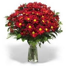 Çanakkale internetten çiçek siparişi  Kir çiçekleri cam yada mika vazo içinde