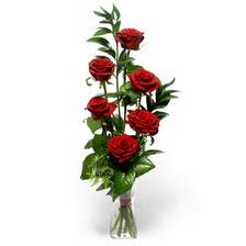 Çanakkale çiçek yolla , çiçek gönder , çiçekçi   mika yada cam vazoda 6 adet essiz gül