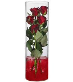 cam içerisinde 7 adet kirmizi gül  Çanakkale çiçek servisi , çiçekçi adresleri