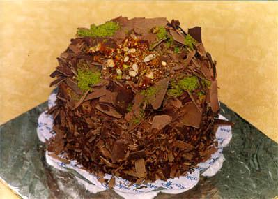 Çikolatali 4 ila 6 kisilik yas pasta  Çanakkale çiçekçiler