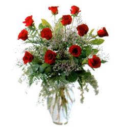 Vazo içerisinde 11 kirmizi gül  Çanakkale kaliteli taze ve ucuz çiçekler
