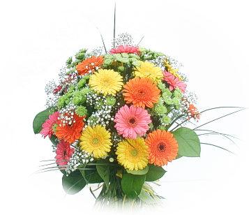 13 adet gerbera çiçegi buketi  Çanakkale güvenli kaliteli hızlı çiçek