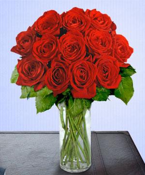 Anneme 12 adet cam içerisinde kirmizi gül  Çanakkale hediye sevgilime hediye çiçek