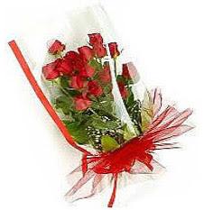 13 adet kirmizi gül buketi sevilenlere  Çanakkale kaliteli taze ve ucuz çiçekler