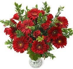 5 adet kirmizi gül 5 adet gerbera aranjmani  Çanakkale 14 şubat sevgililer günü çiçek