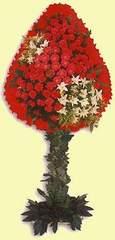 Çanakkale çiçek siparişi vermek  dügün açilis çiçekleri  Çanakkale çiçek gönderme