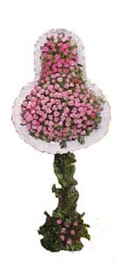 Çanakkale uluslararası çiçek gönderme  dügün açilis çiçekleri  Çanakkale çiçek mağazası , çiçekçi adresleri