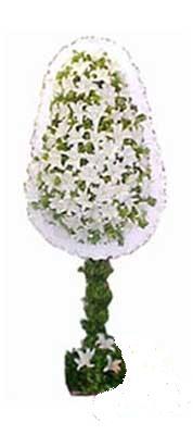 Çanakkale hediye sevgilime hediye çiçek  nikah , dügün , açilis çiçek modeli  Çanakkale güvenli kaliteli hızlı çiçek