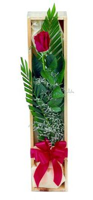 1 adet kutuda kirmizi gül  Çanakkale çiçekçiler
