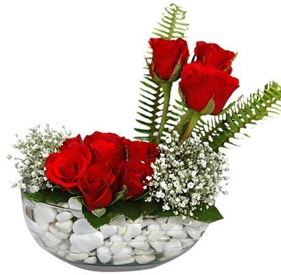 cam içerisinde 9 adet kirmizi gül  Çanakkale kaliteli taze ve ucuz çiçekler