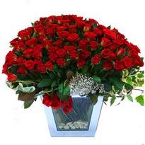 Çanakkale çiçek servisi , çiçekçi adresleri   101 adet kirmizi gül aranjmani
