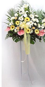 Çanakkale güvenli kaliteli hızlı çiçek   perförje çiçegi dügün çiçekleri